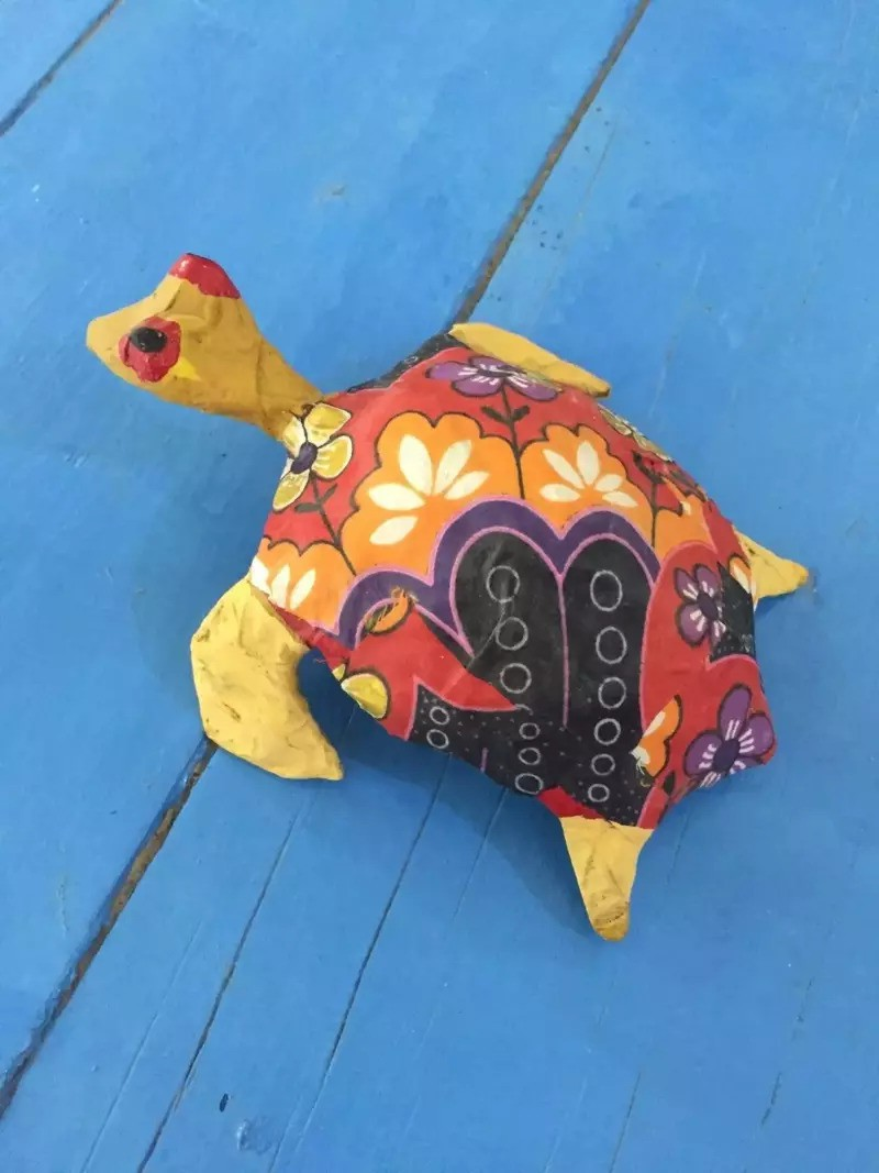 Ploughshare Tortoise, Adding Texture to Shell | Paper mache crafts ... | 1067x800